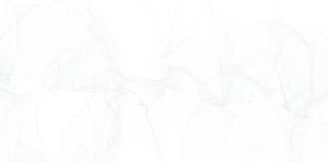 lines bg